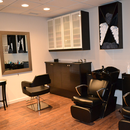 Hair stylist chicago blow dry bars and finishing salons for A j salon chicago